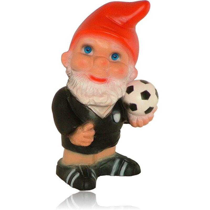 Fussball Schiedsrichter